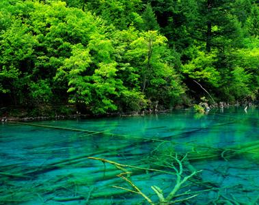 Jiuzhaigou Valley Scenic and Historic Interest