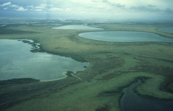 Saryarka Steppe and Lakes of Northern Kazakhstan
