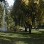 Carlton Gardens
