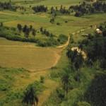 Valley de los Ingenios