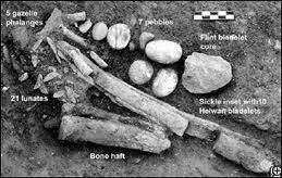 Tools of the Hunter-Gatherer