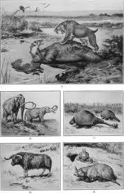 Pliocene and Pleistocene Africa