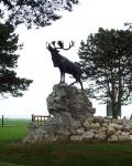 Gueudecourt (Newfoundland) Memorial