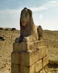 Umm el-Baragat