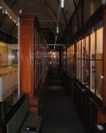 Macleay Museum